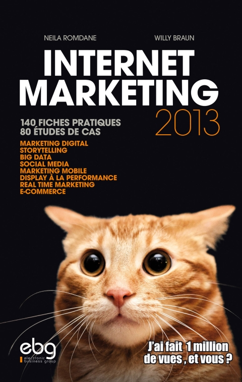internet marketing 2013 couverture