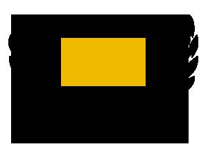 regle 411 social media